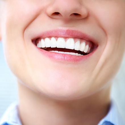 Cuántos tipos de dientes existen y qué función tienen?